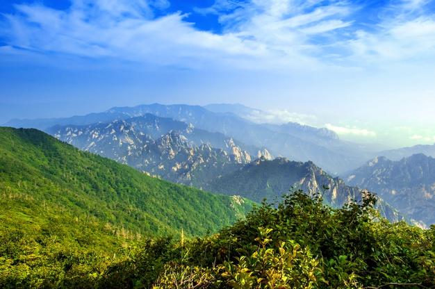 Sceneries of Nature